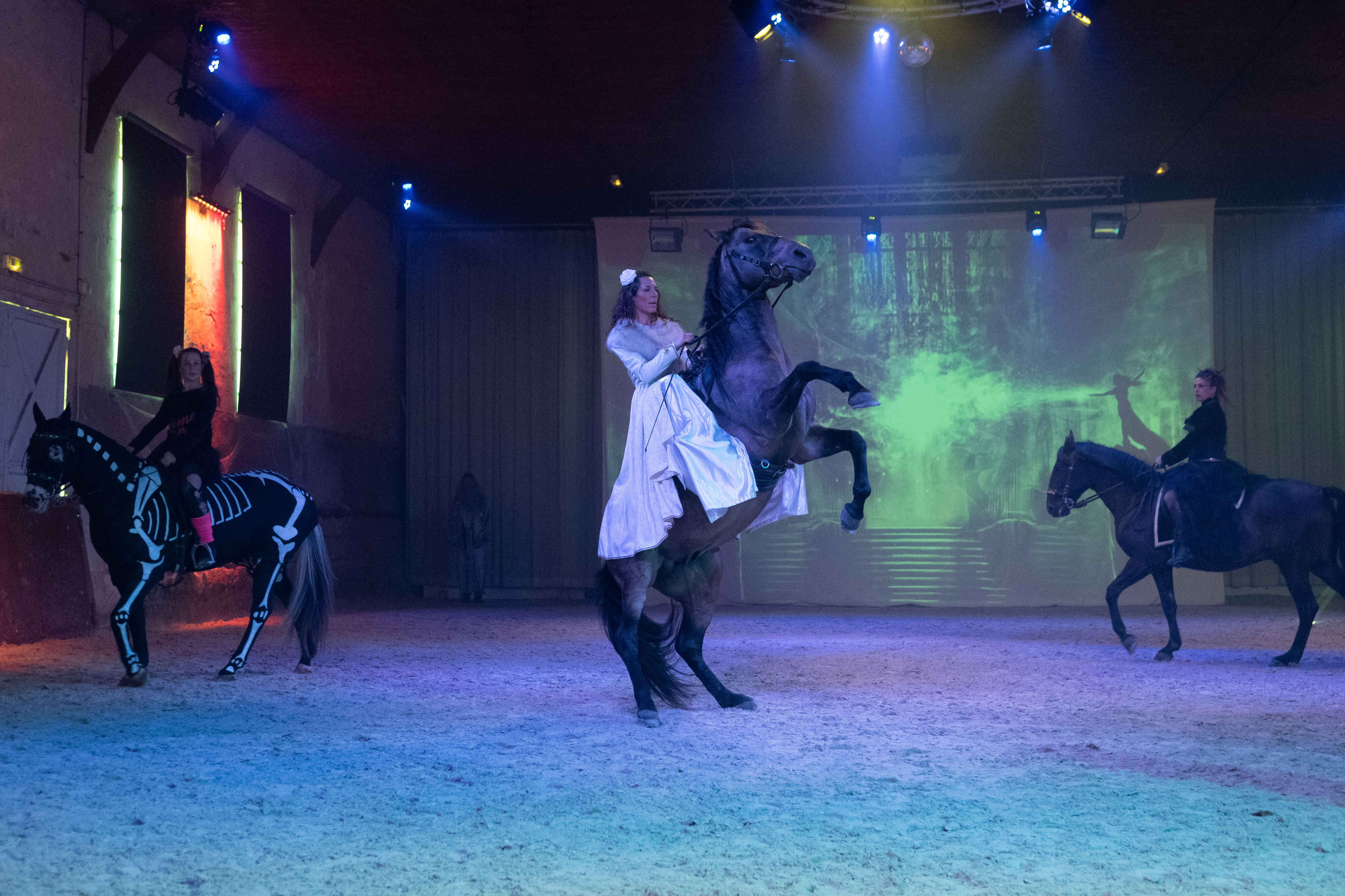 spectacle chevaux Alexia Gilliane