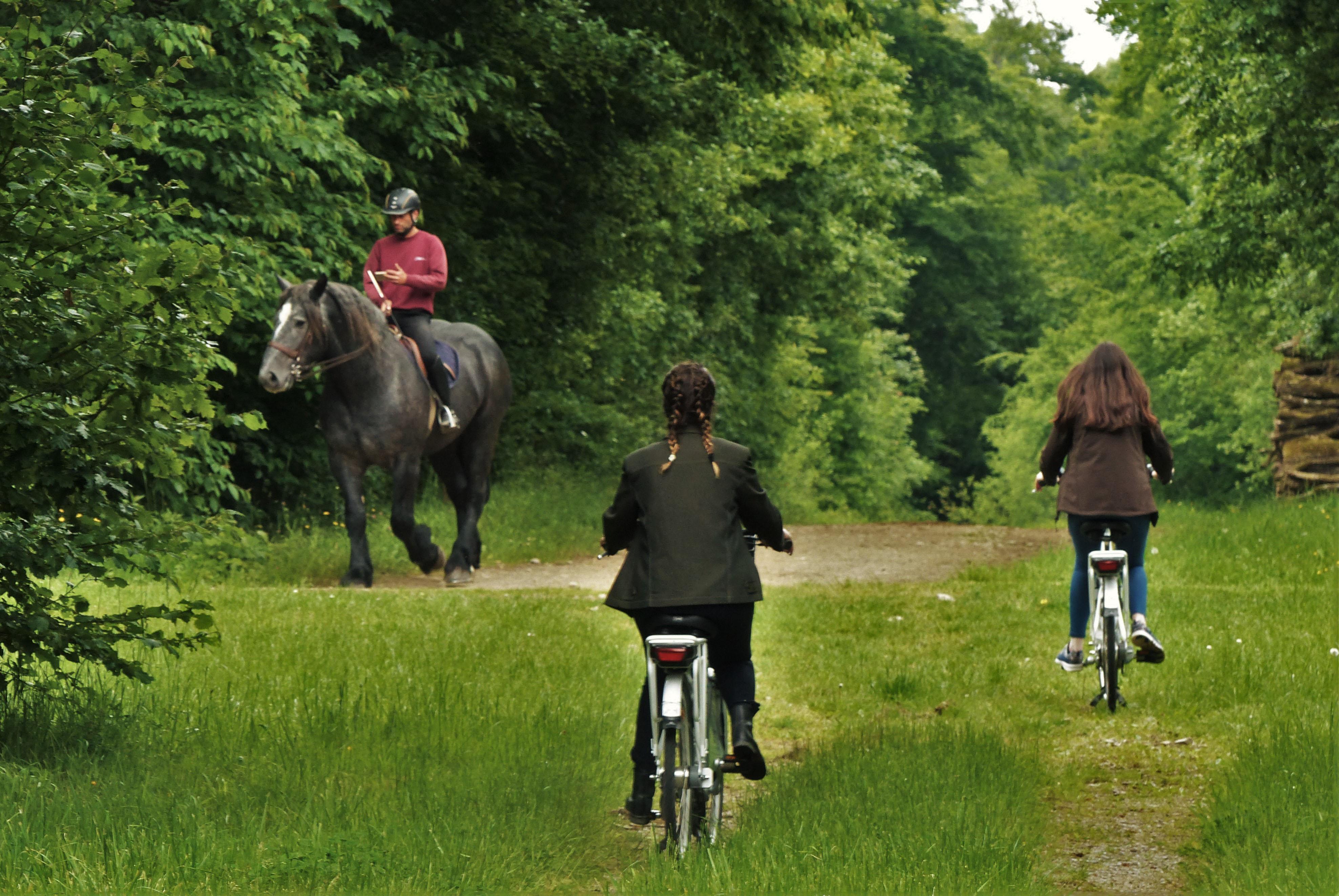 vélo sur le Domaine du Pin